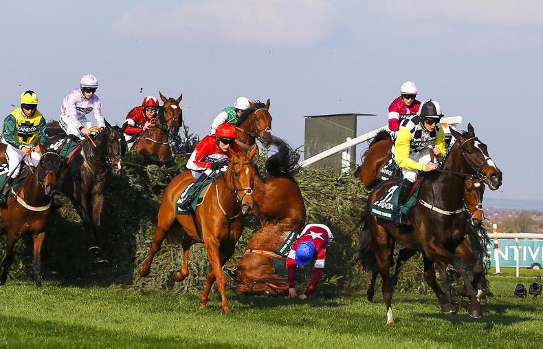 Alpha Des Obeaux escapes unscathed after Grand National fall
