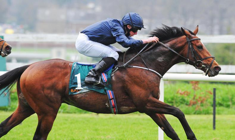 SIMON ROWLANDS: Gustav could gain Guineas place