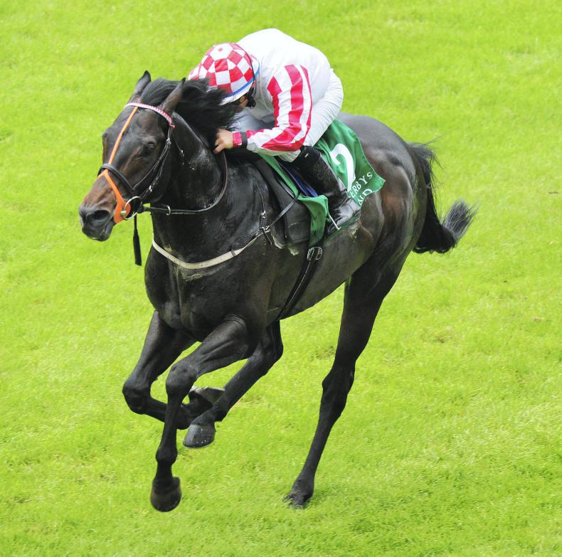 FRESHMAN SIRES: Sprint star Slade Power off the mark