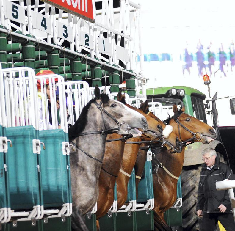 Barrier trials to boost sales of horses abroad