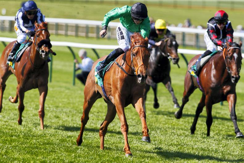 PEDIGREE ANALYSIS: Dubawi double, and notable first for Dawn Approach